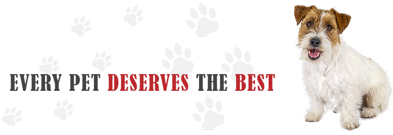 Pawsome Raw - Raw Dog Food, Raw Pet Food